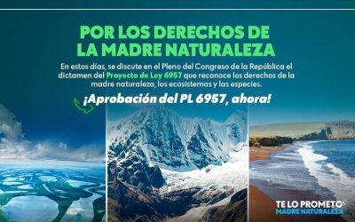 ¡El momento es ahora! Organizaciones siguen reivindicando el reconocimiento de los derechos de la Madre Naturaleza