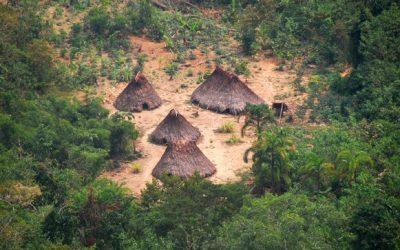 Se crea reserva indígena Kakataibo Norte y Sur con casi 150 mil hectáreas de bosques