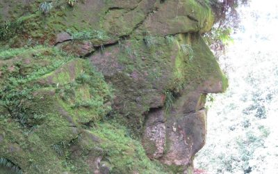 Madre de Dios: Reconocen como Patrimonio Cultural al monumento sagrado Rostro Harakbut