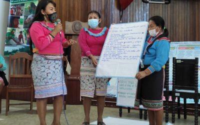 'Destrezas para la acción'. Capacitan a mujeres indígenas shipibas para fortalecer su participación en espacios públicos